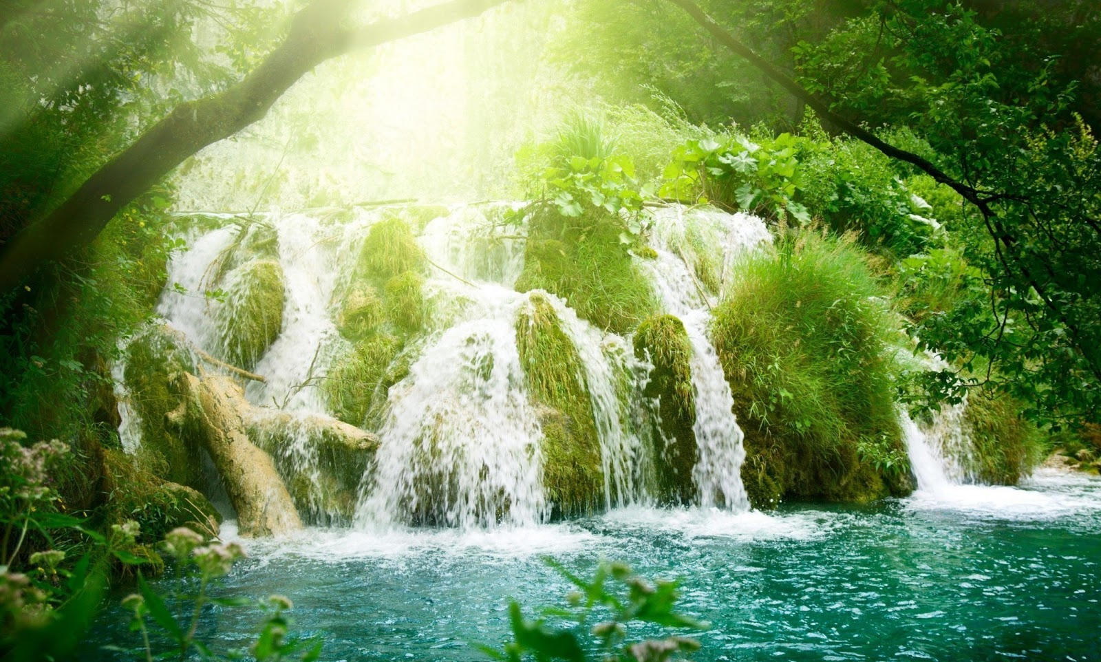 AMAZING NATURE HD WALLPAPERS 1080p ~ HD WALLPAPERS